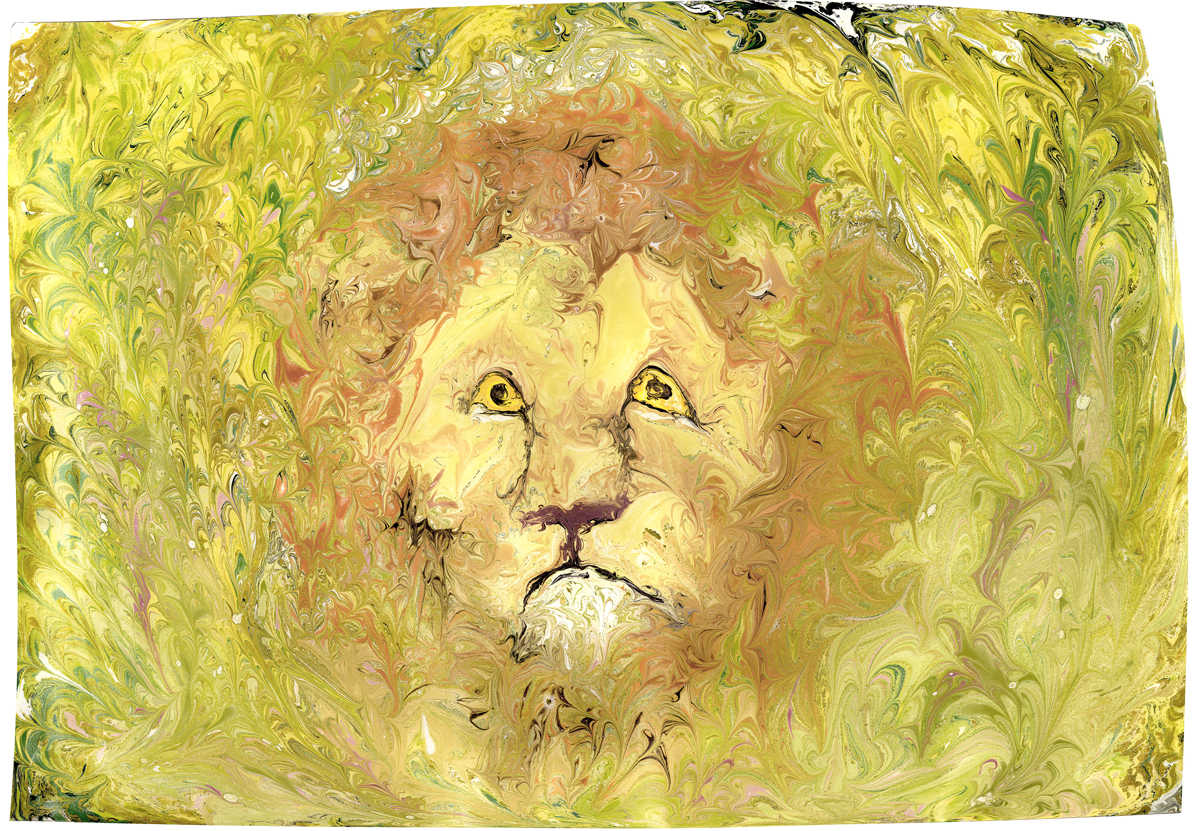Lion Merged 2 smaller.jpg