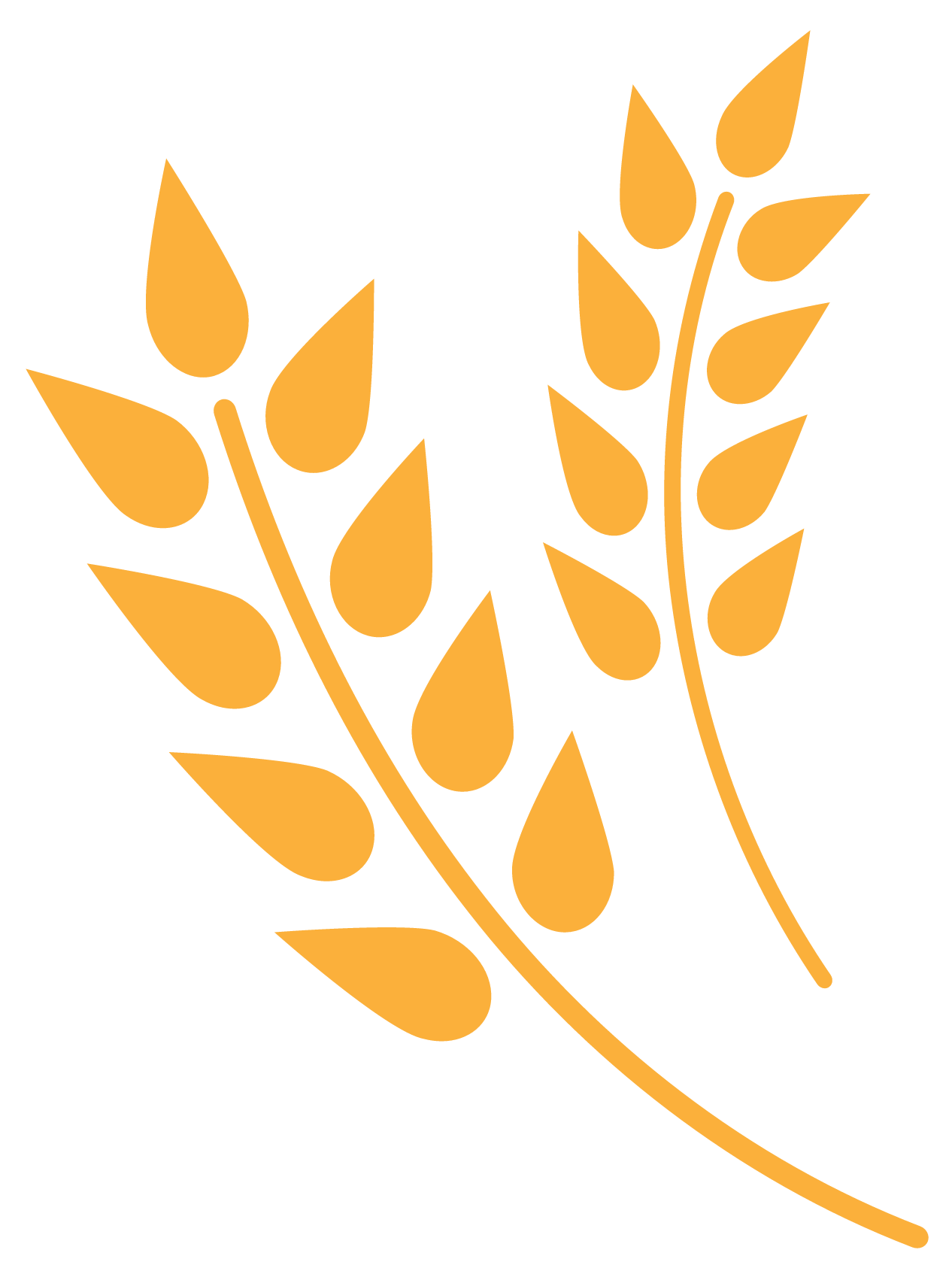--logo (3).png