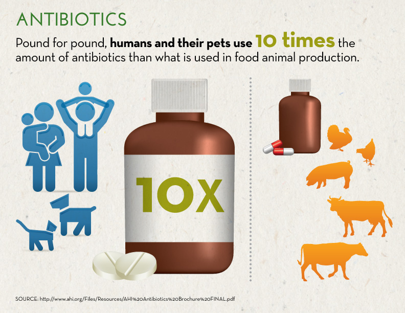 Antibiotics_InfographicB_Sept13-1.jpg