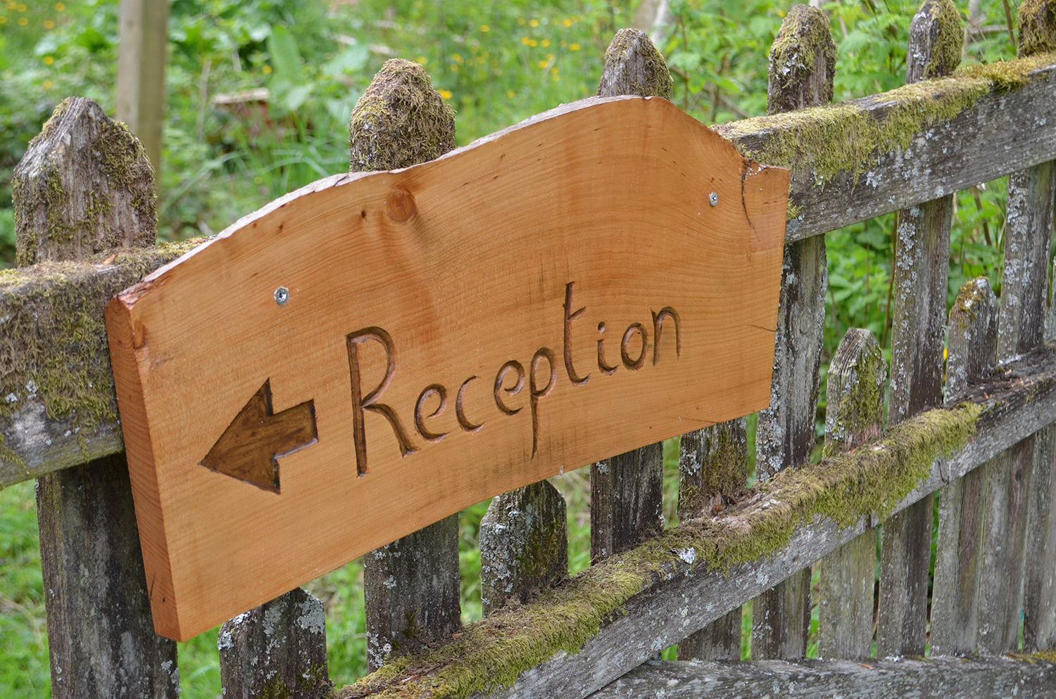reception open from 9am