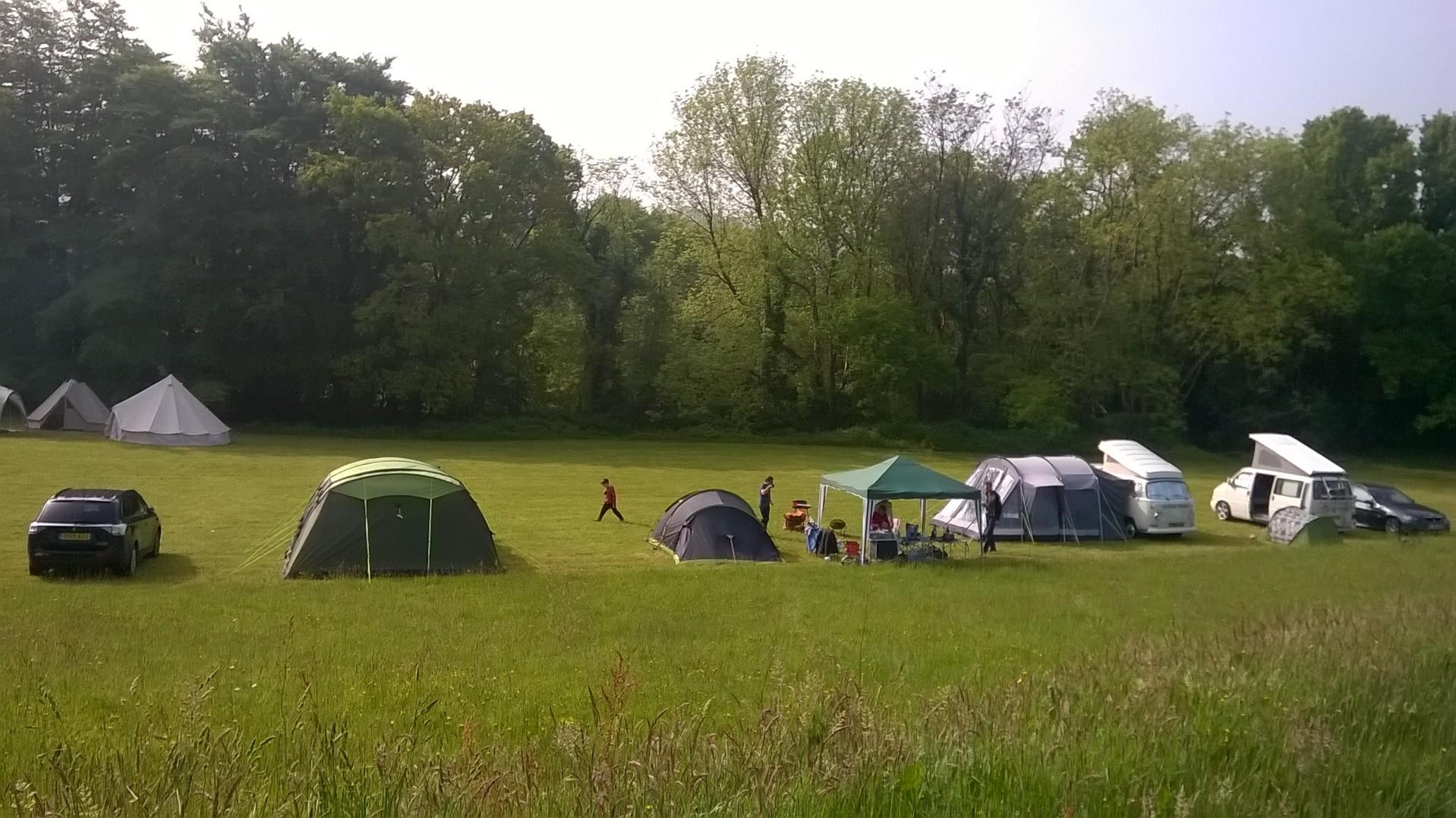 meadow field