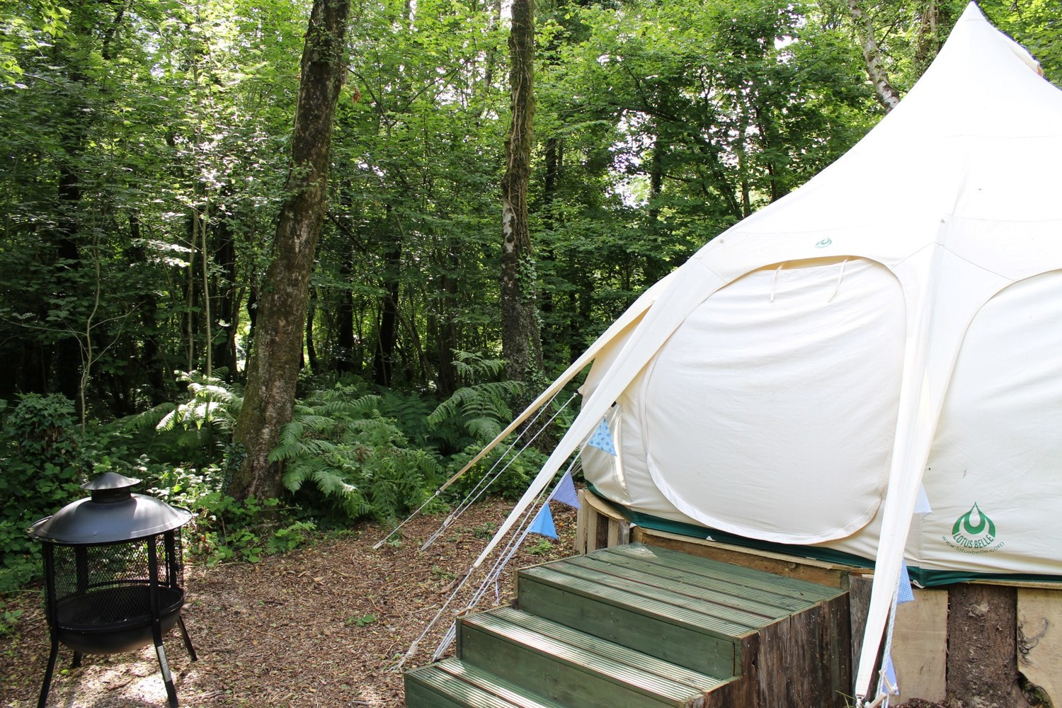 help to create your own glamping business