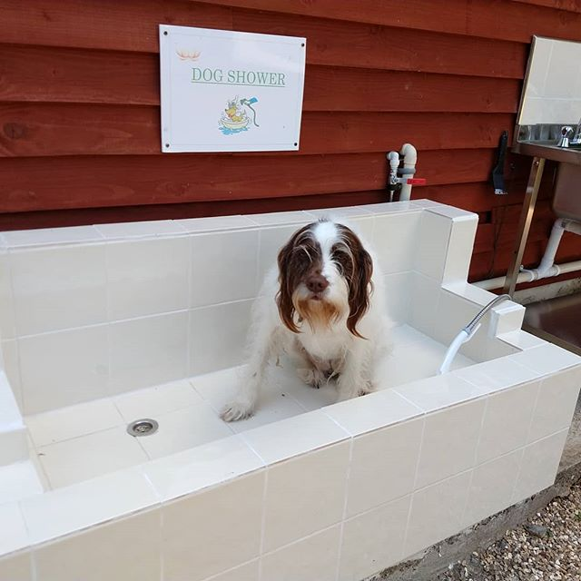 No more muddy smelly dogs in your tent!