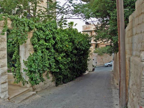 View from the pathway showing the Mango House across Rainbow Street.   لقطة مأخوذة من الممر يظهر فيها منزل عائلة منكو في الجهة المقابلة من شارع الرينبو