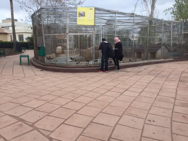 View of one of the bird enclosures in the park   لقطة لأحد أقفاص الطيور في الحديقة