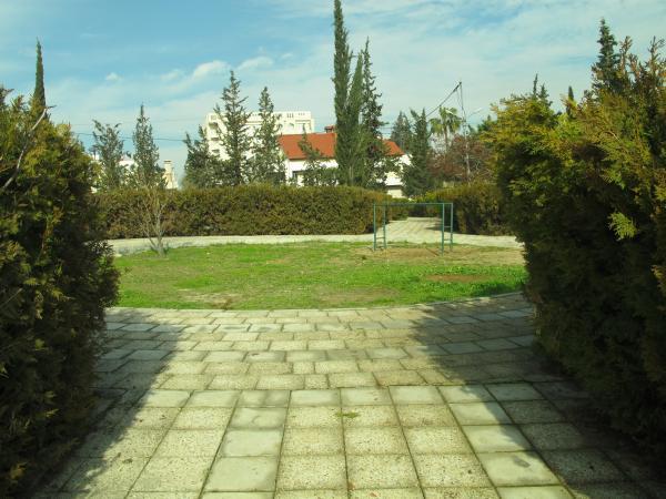 View of a planted area in the park   لقطة لمساحة مزروعة في الحديقة