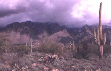 Fig. 1: A typical view of the landscape surrounding Tucson.