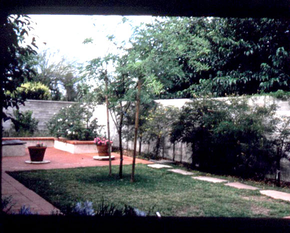 Figure 4: The landscaped area above the underground rainwater tanks at Casa del Agua: lawn area, Mesquite tree, and potted plants placed on the tanks' access manways.