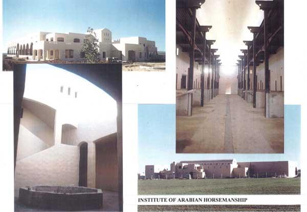 The Institute of Arabian Horsemanship