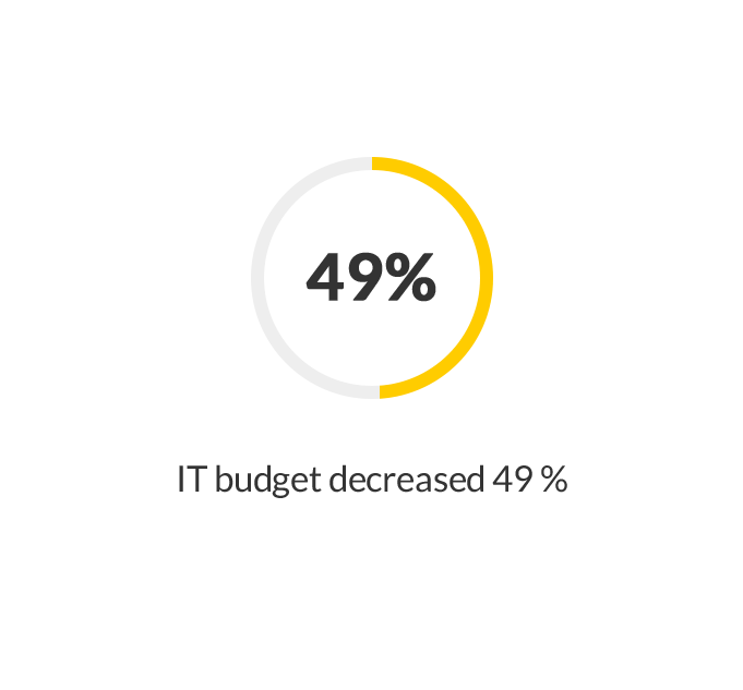 IT budget decreased 49%