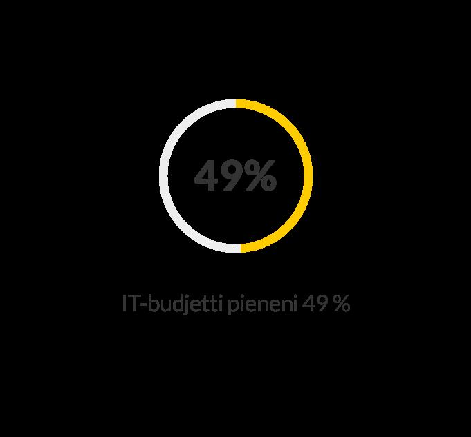 IT-budjetti pieneni 49%