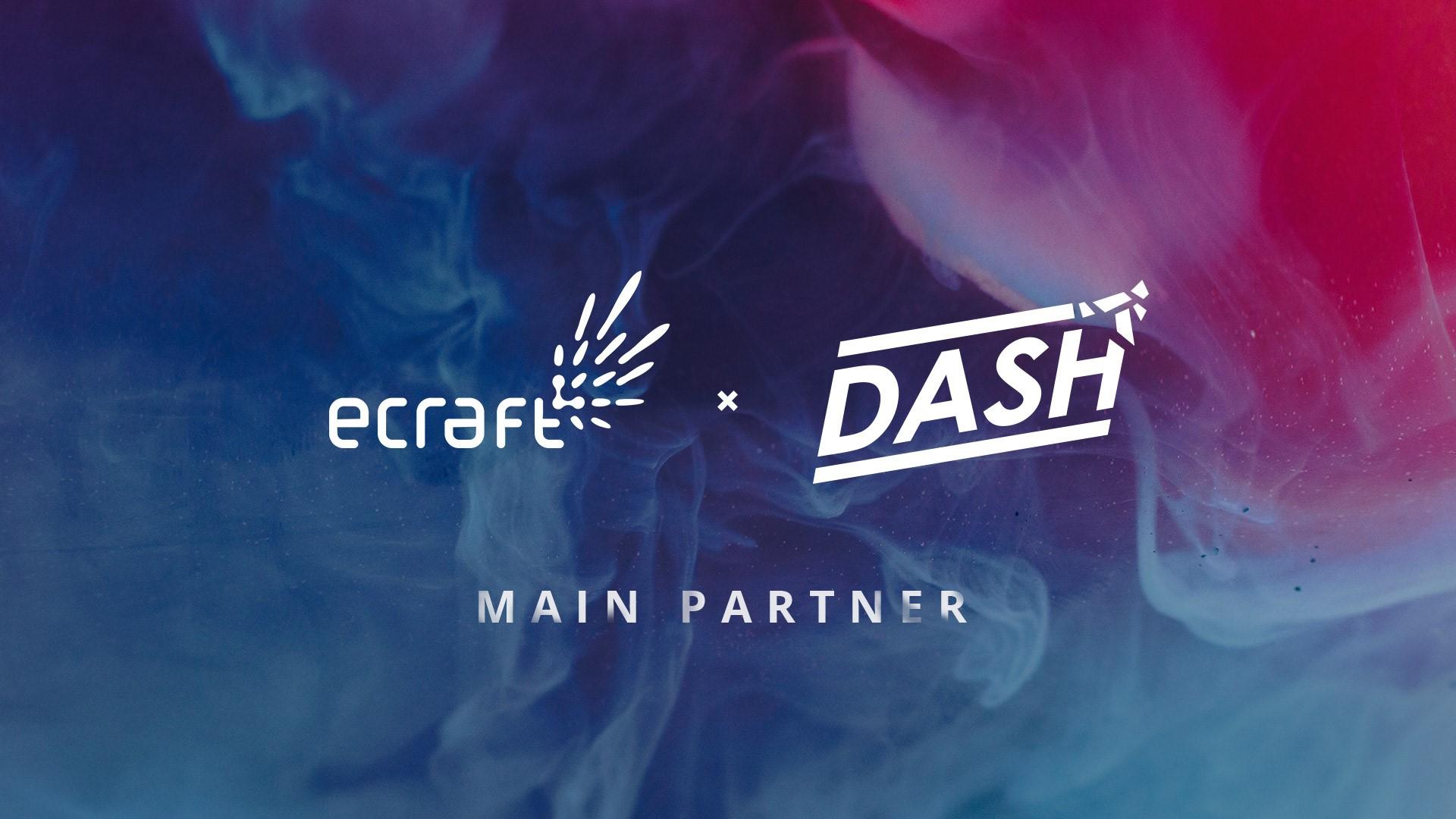 dash-partner (002).jpg