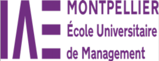 MONTPELLIER 2 école de management.PNG