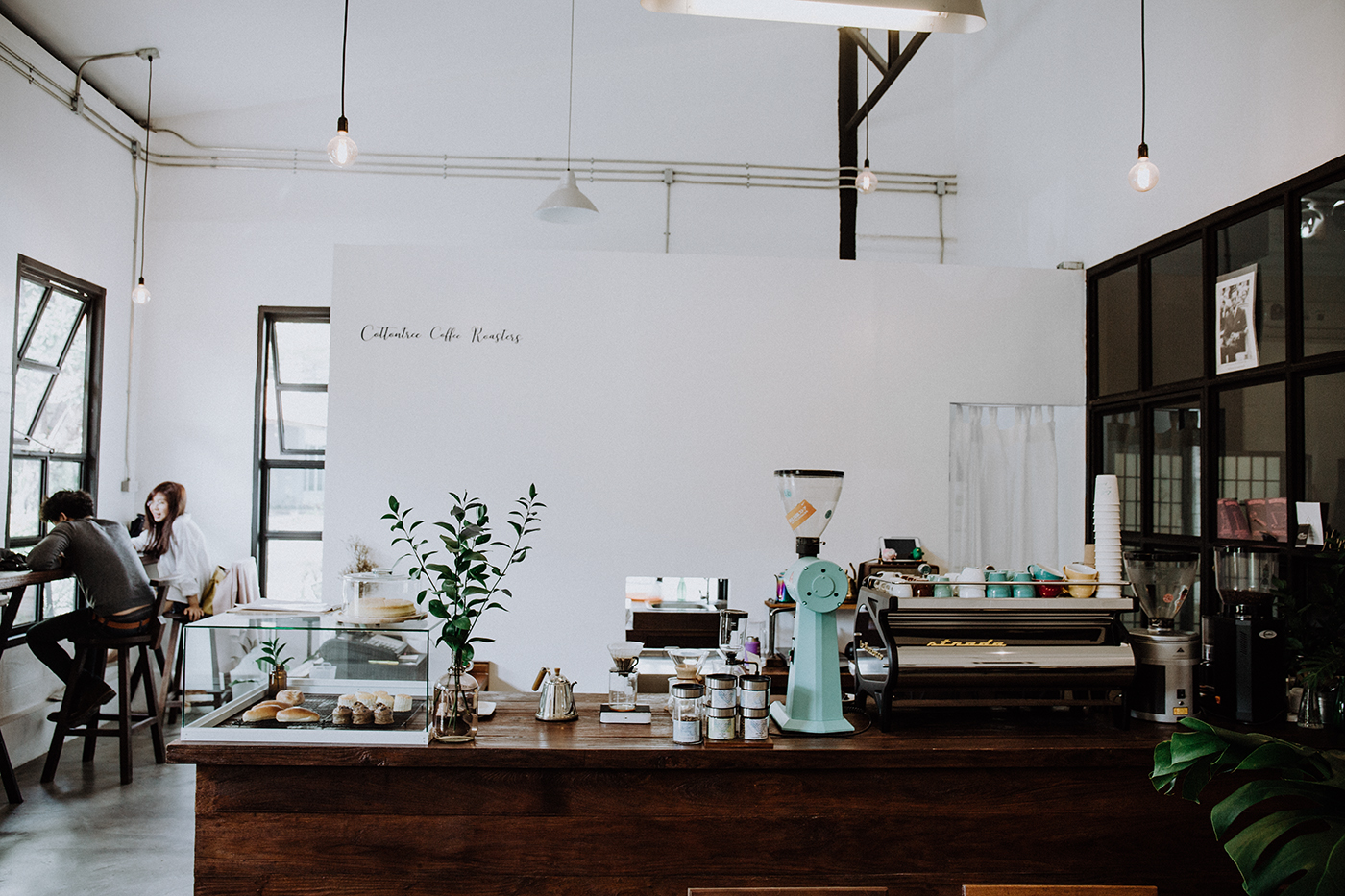 cottontree coffee roasters Chiang Mai