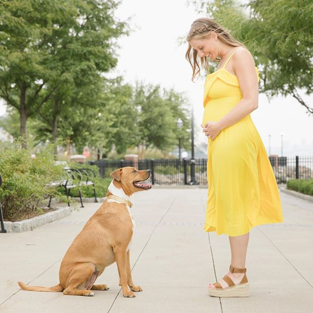 """May the rest of our lives be the best of our lives!"" . 📸 @courtneycollinsphoto . #maternityphotography #31weekspregnant #thirdtrimester #maternityphotos #babyontherun"