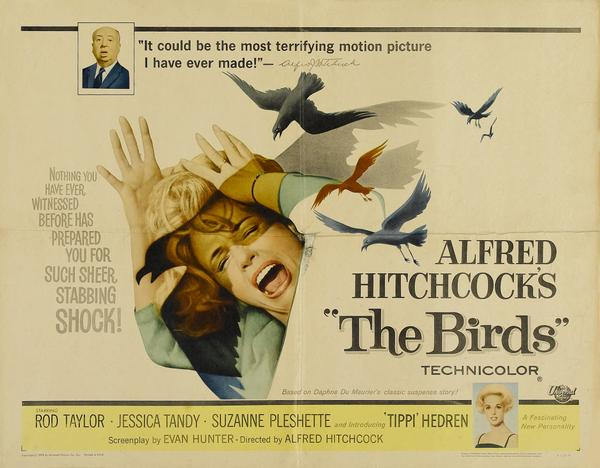 Hitchcock had no blind spot in identifying the massive power of crows