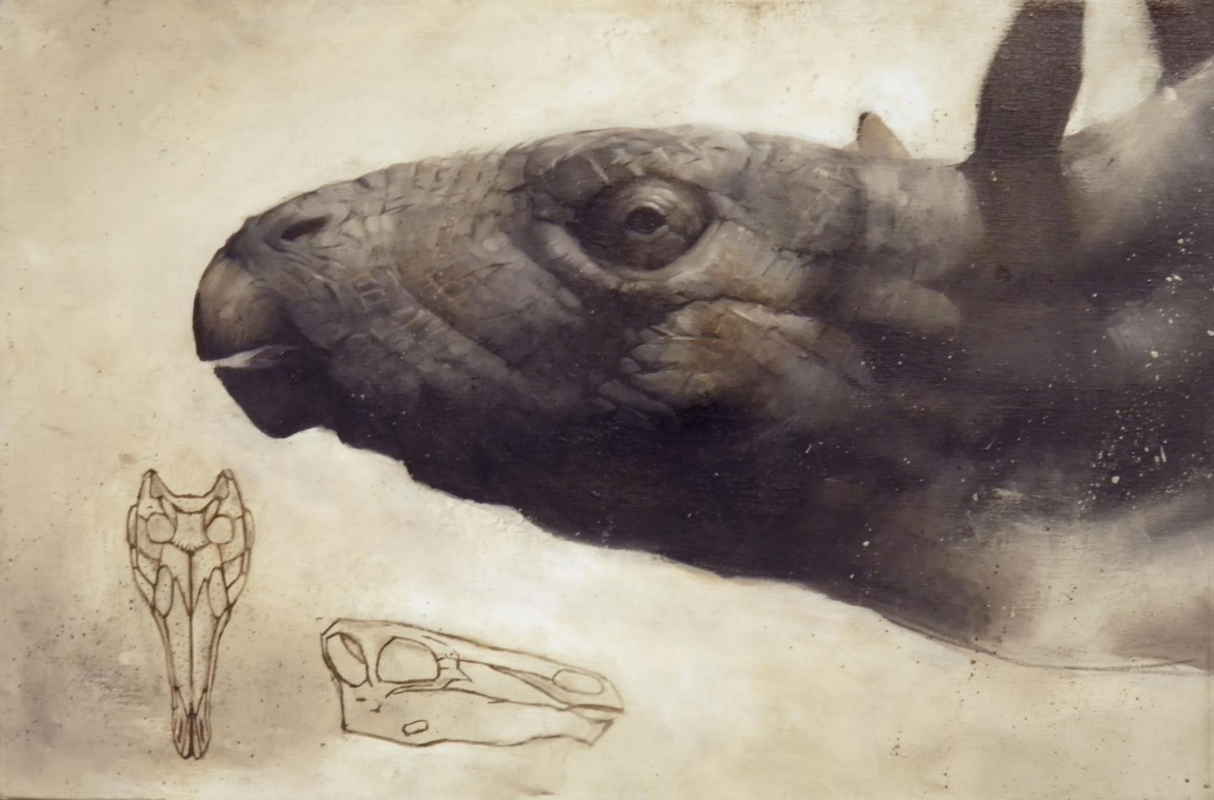 Copy of STEGOSAUR