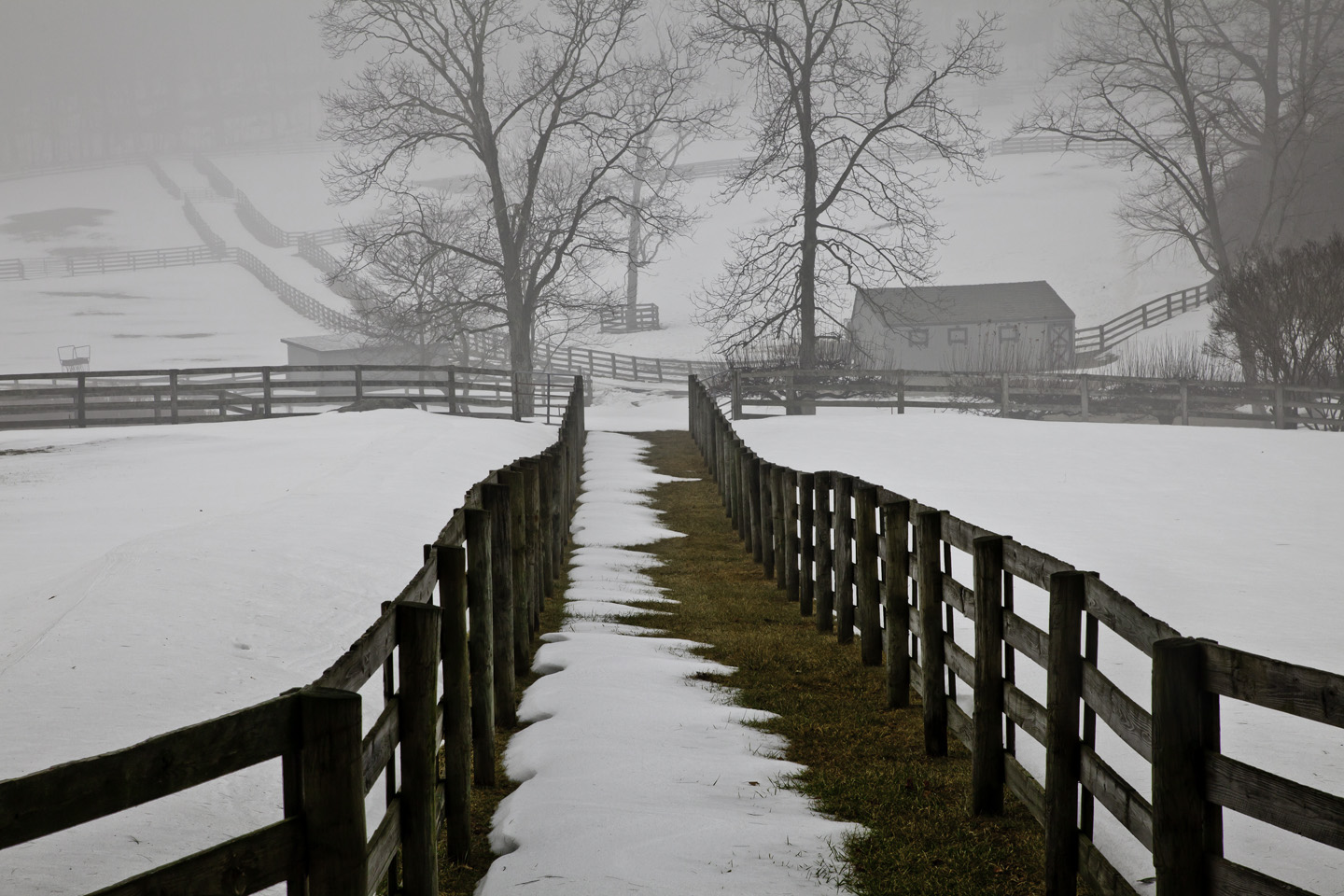 Winter Horse Farm 1024