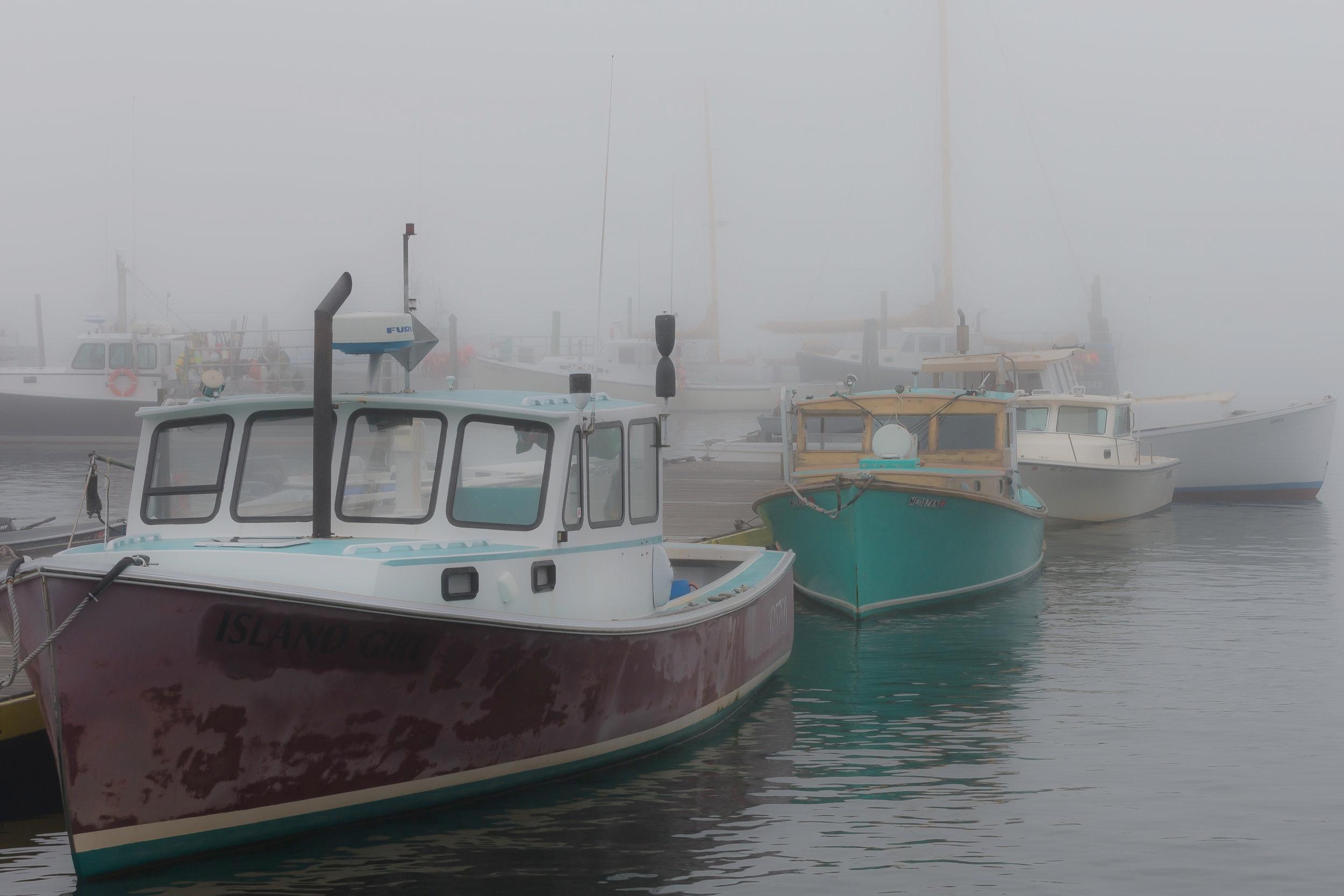 Northeast Harbor Bows 1154