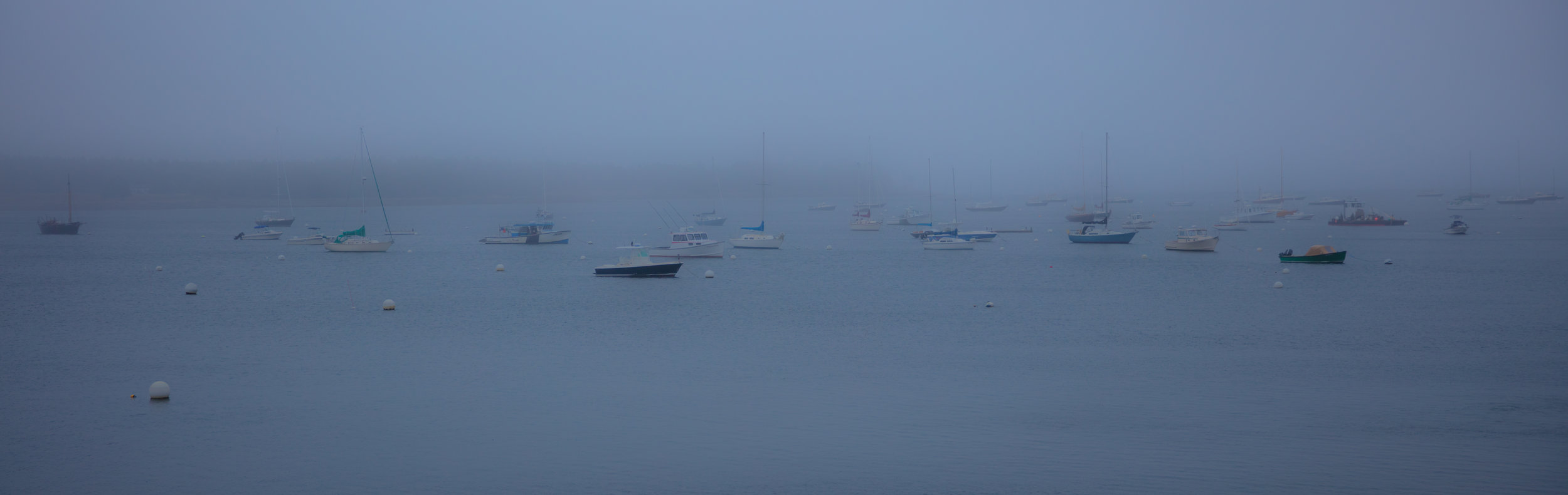 Southwest Harbor Fog