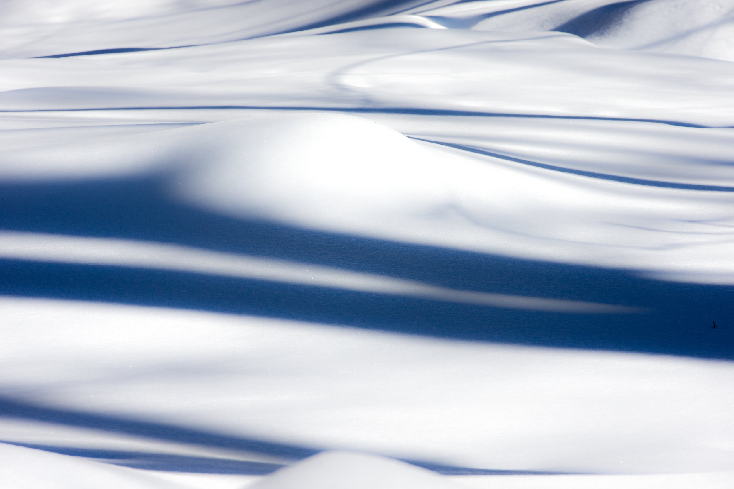 Abstract Silk