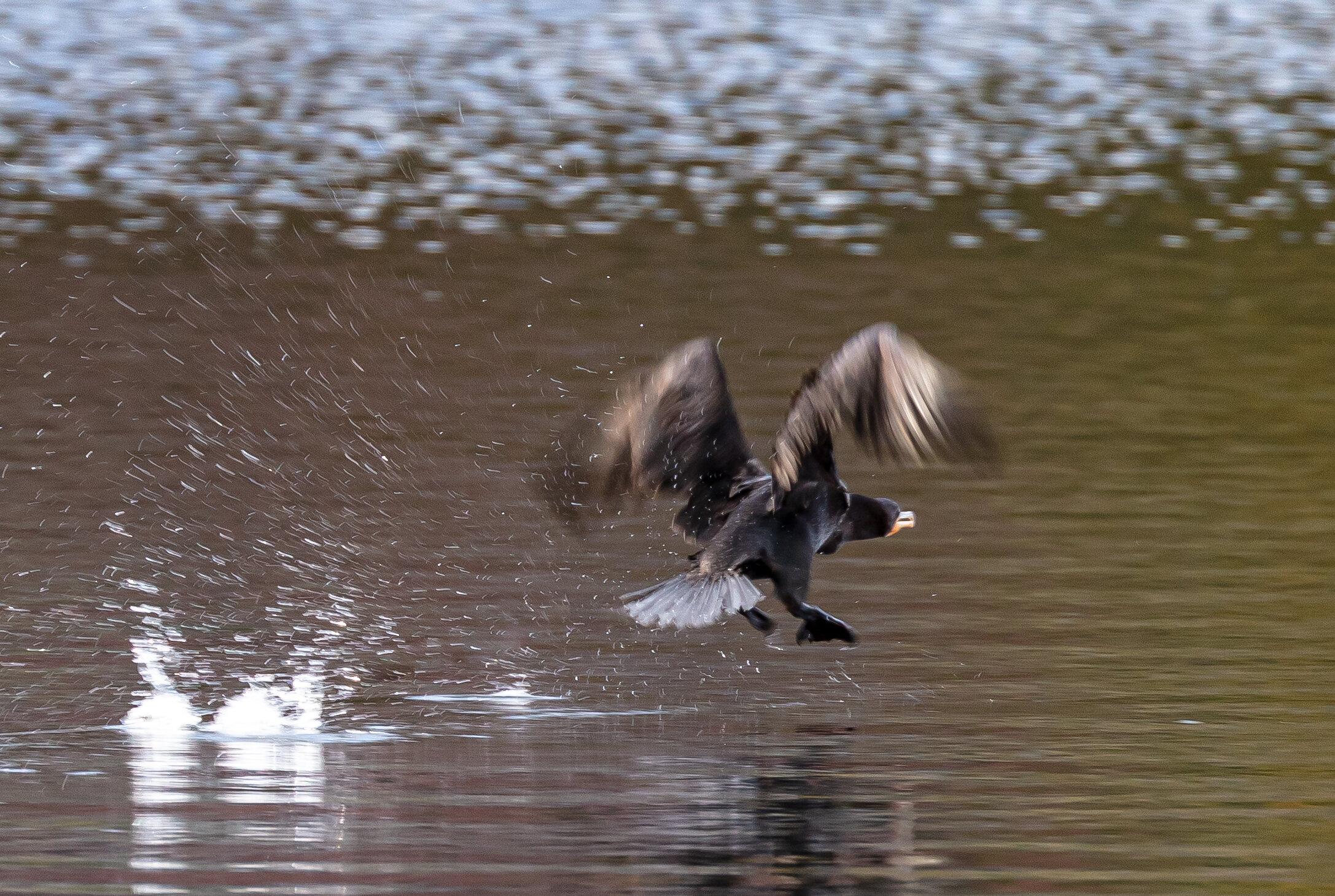Running Takeoff