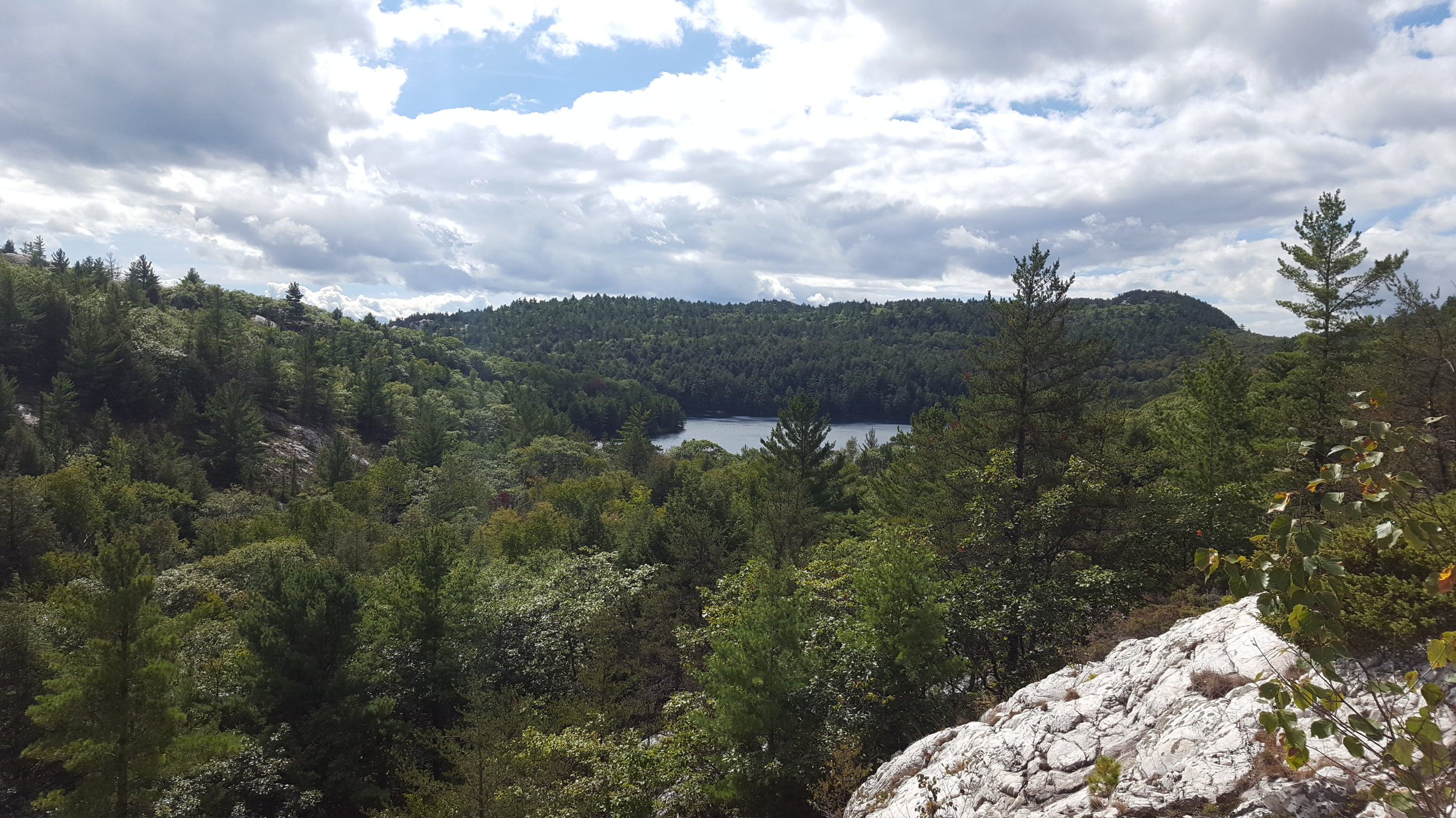 View of Nellie Lake
