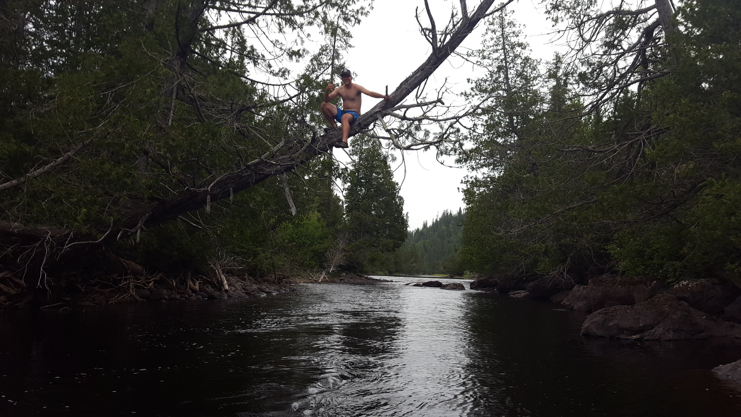 Alex climbing trees on the Steel River