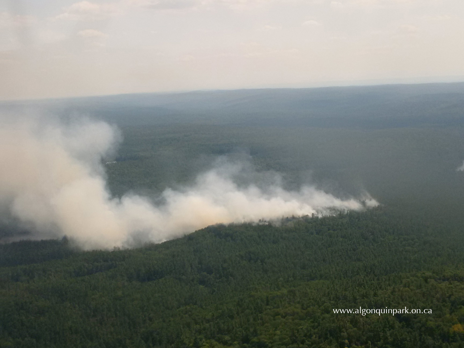 Photo: Algonquin Park - 30 Hector Fire in the forest surrounding High Falls Lake which was created by humans. Taken on August 10th 2016. Read more about it here