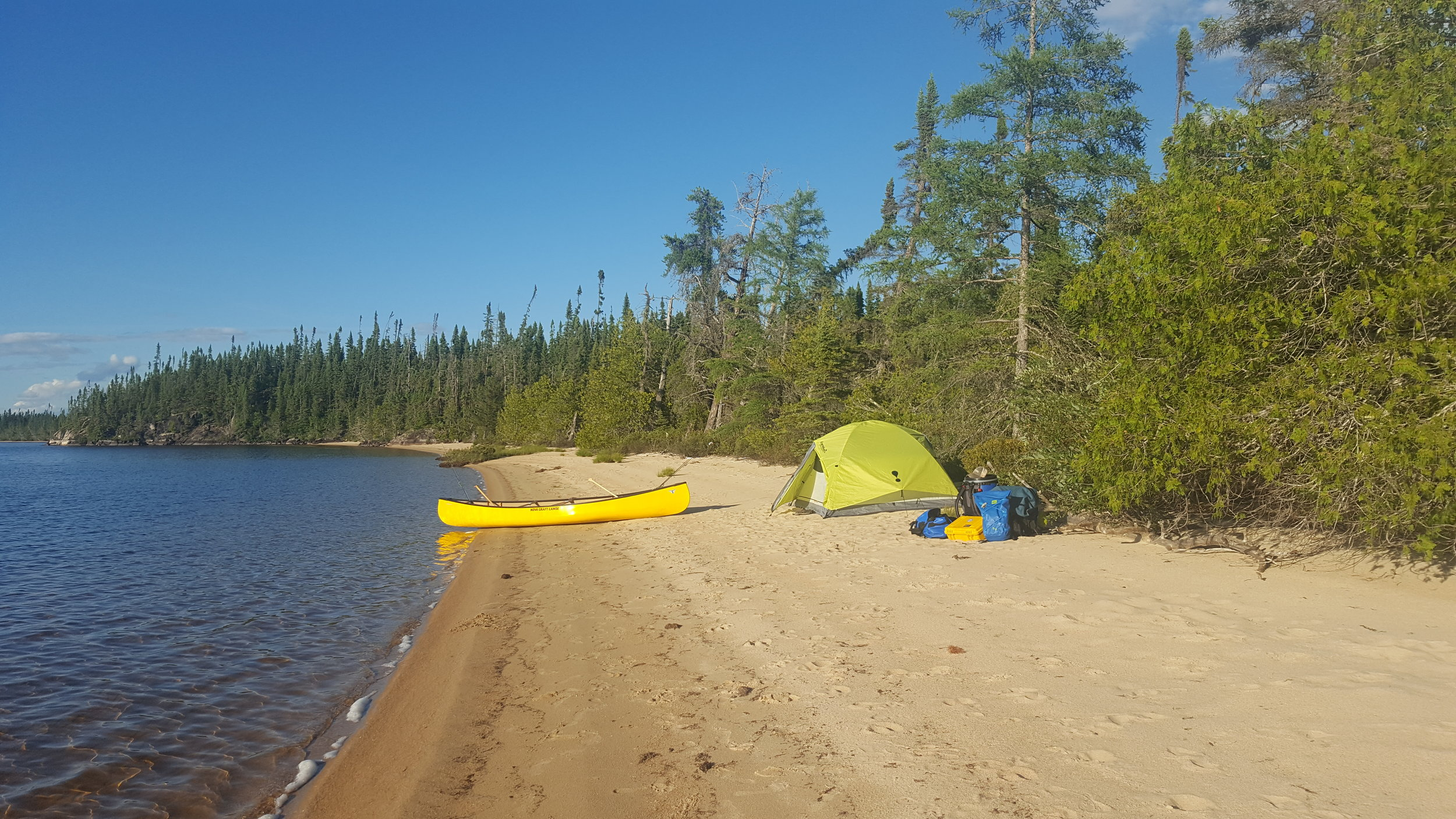 Camp 4 in Outlet Bay (on Smoothrock Lake) littered with Caribou & Moose tracks.