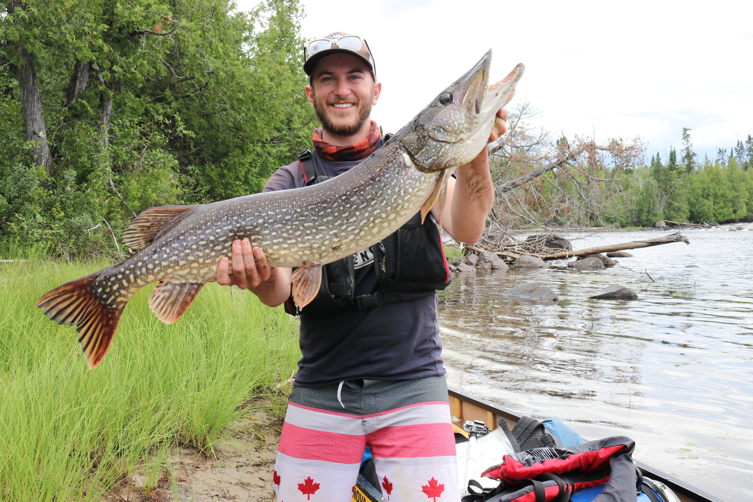 "42.5"" pike caught on 10lb monofilament line with a jig - 45 minute fight on the Berg River"
