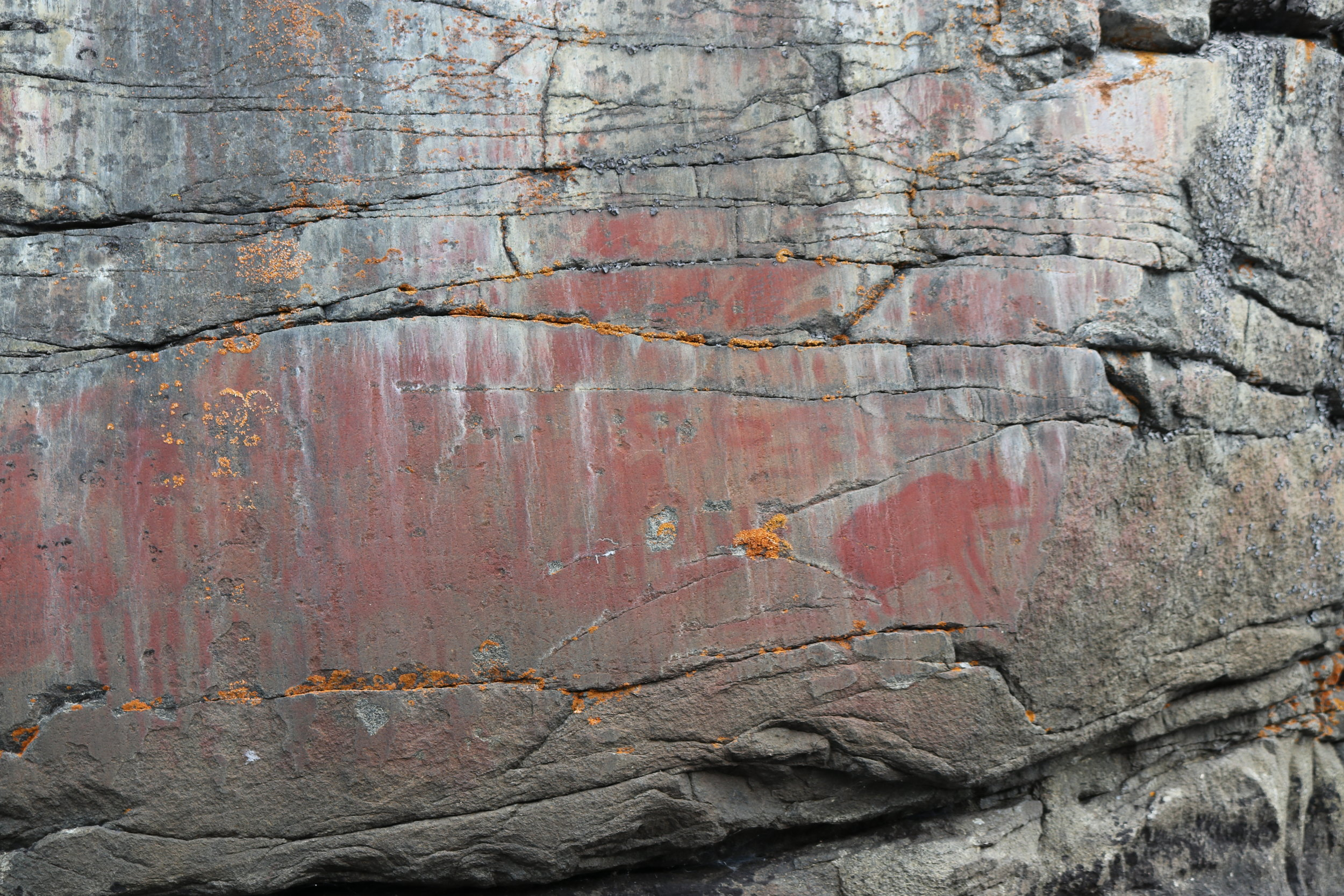 Pictographs found on Cliff Lake
