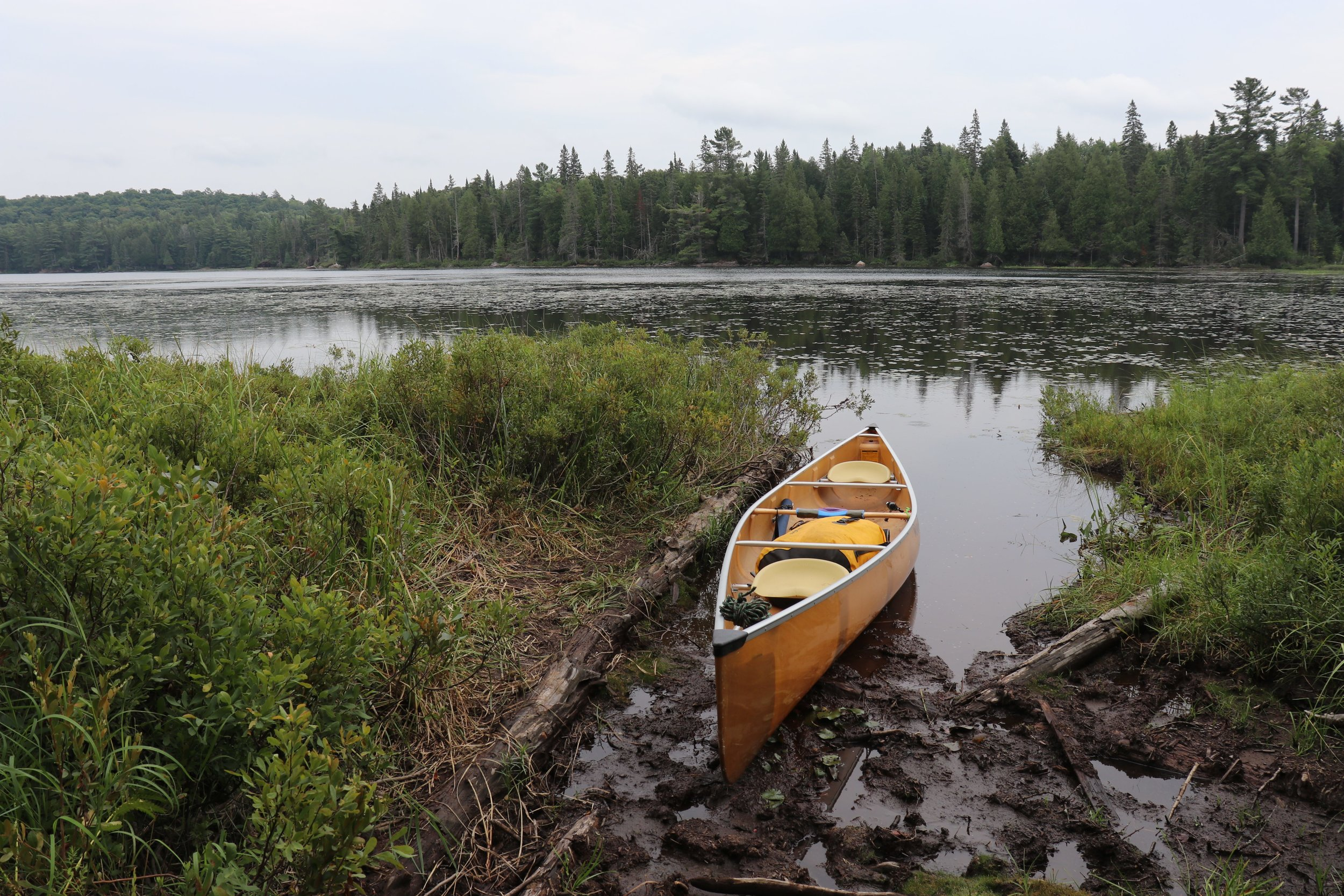 On route to Big Bob Lake, tackling portage number 16 on the day