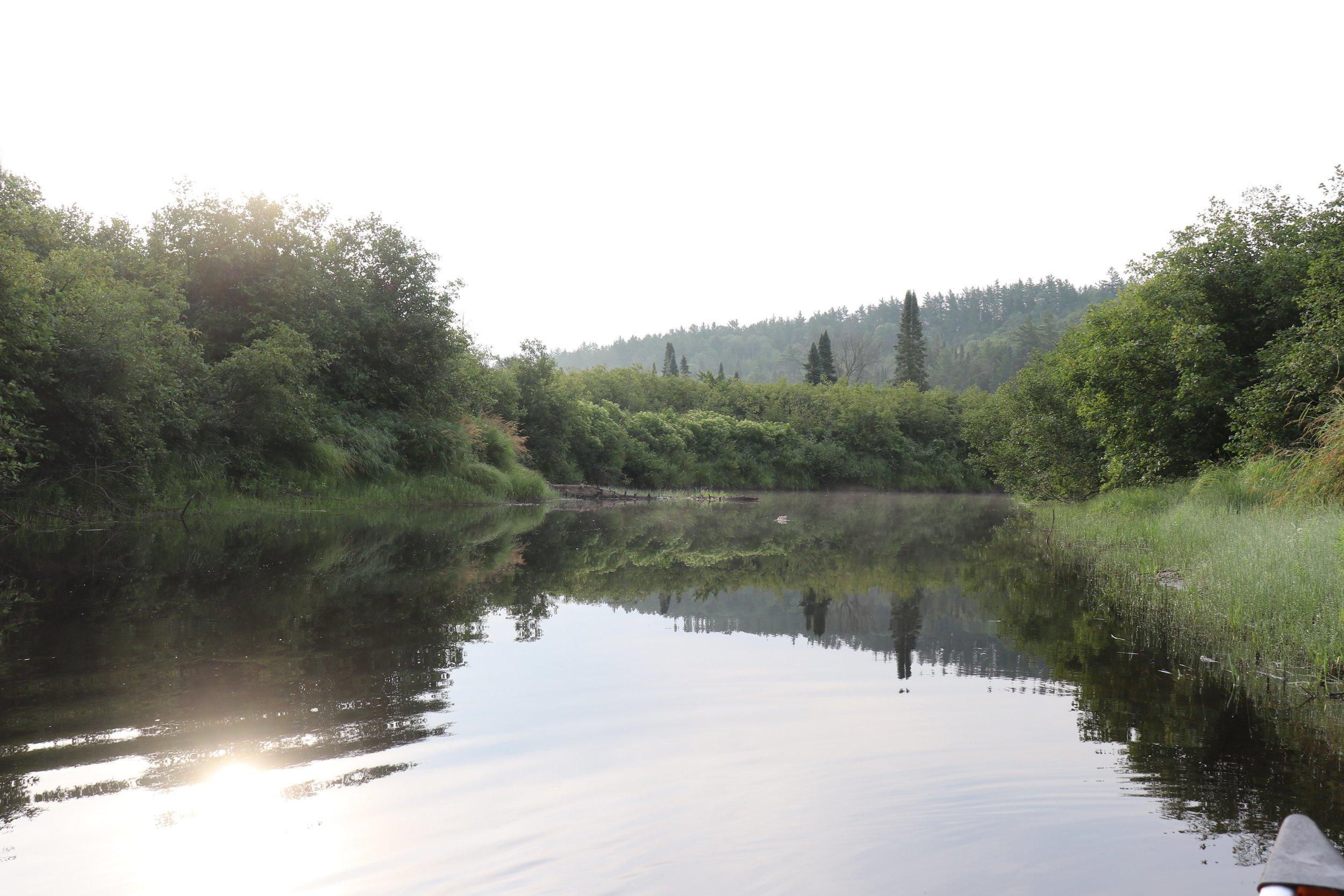 Beautiful morning paddle along the Nipissing River