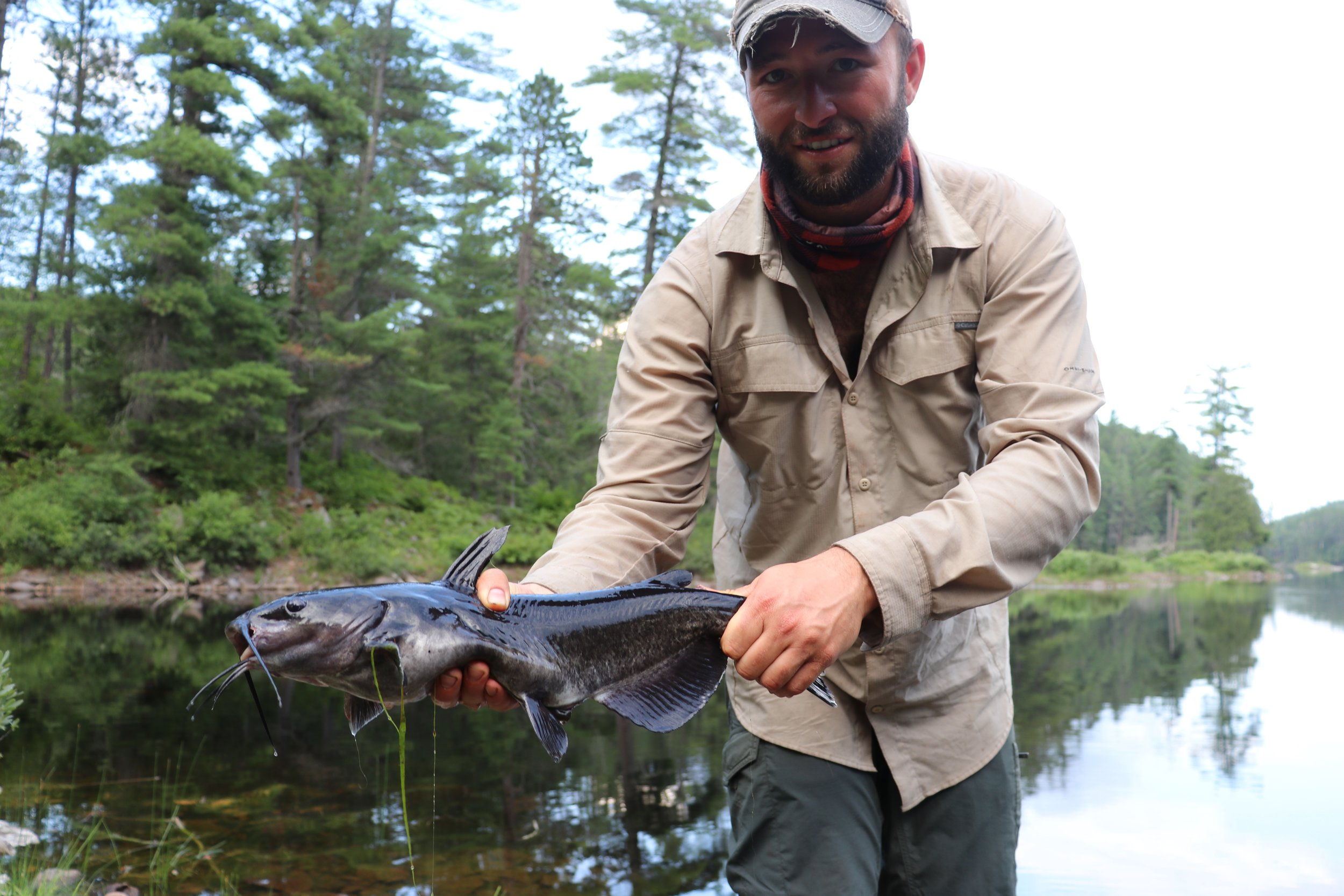 Catfish at the end of the 860m portage going into Radiant Lake