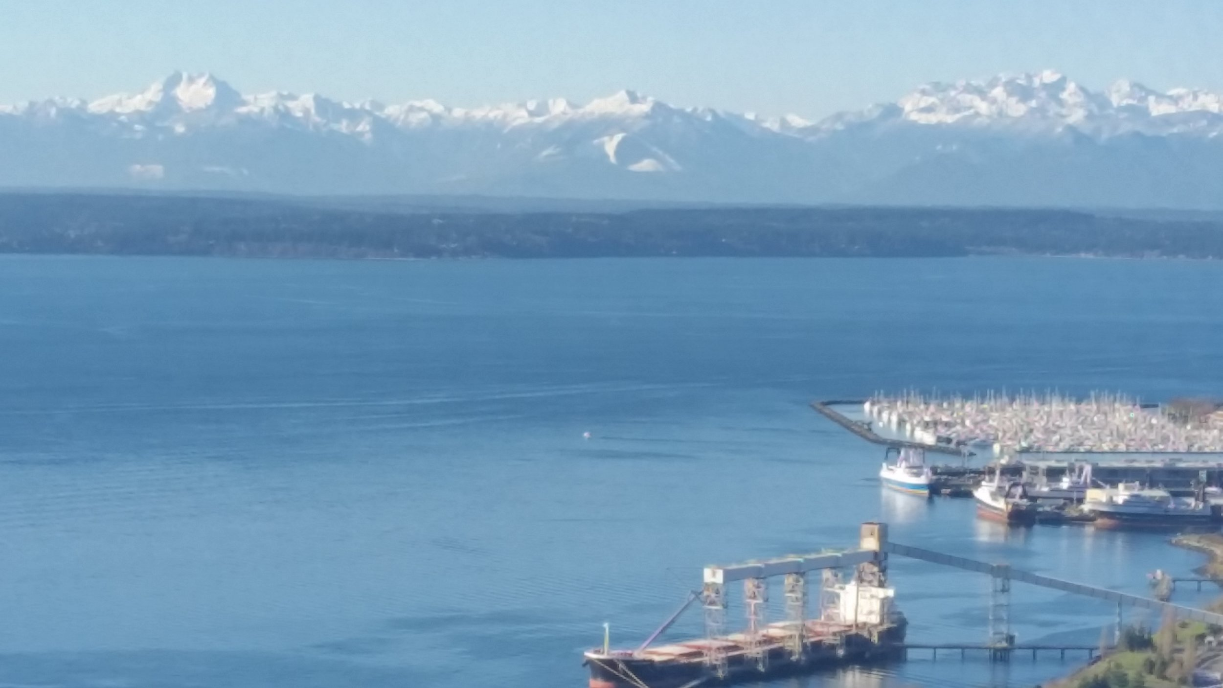 Olympic Mountains and Elliot Bay Marina from the Space Needle