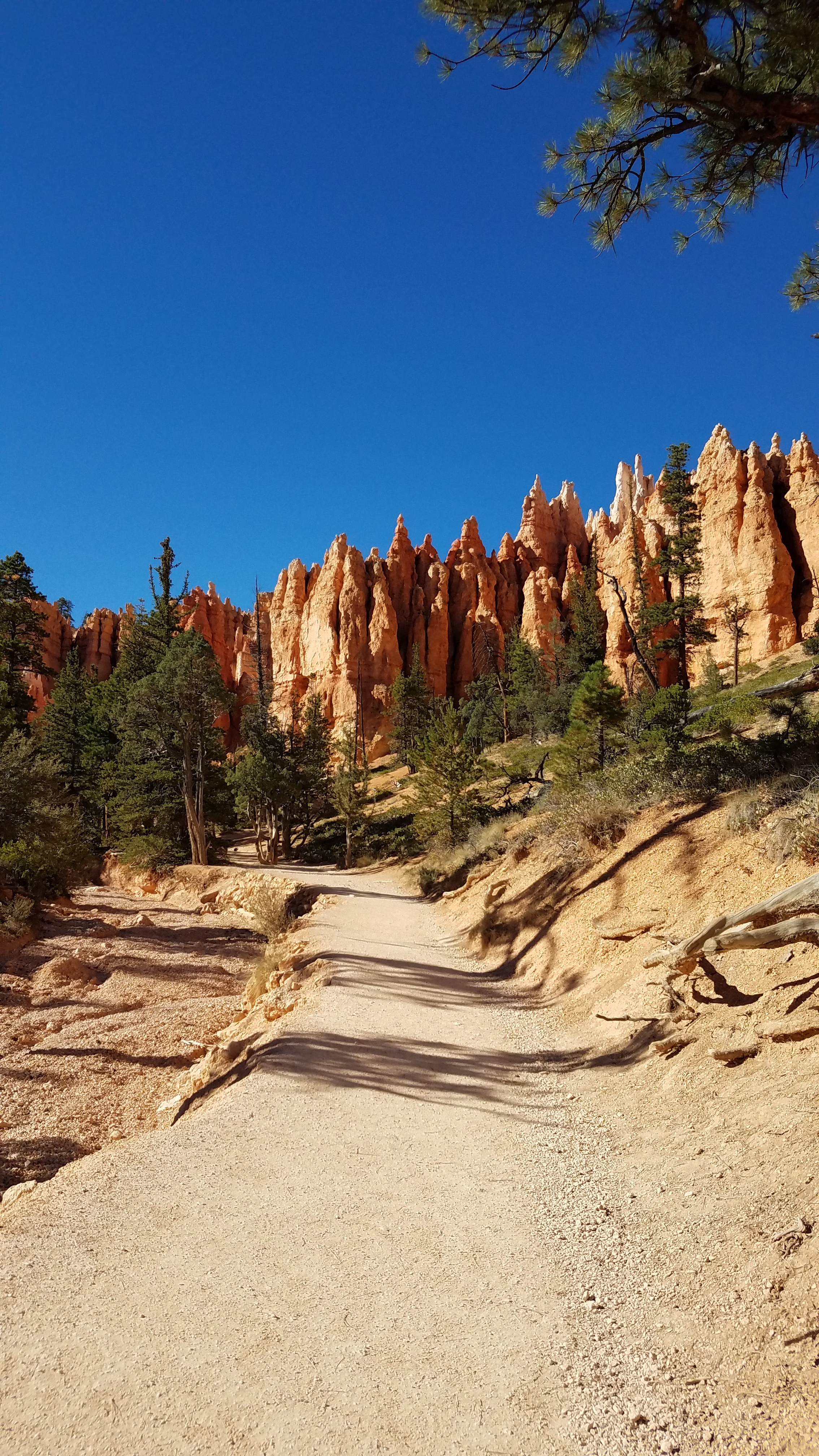 Hiking in the hoodoos at Bryce Canyon National Park, UT