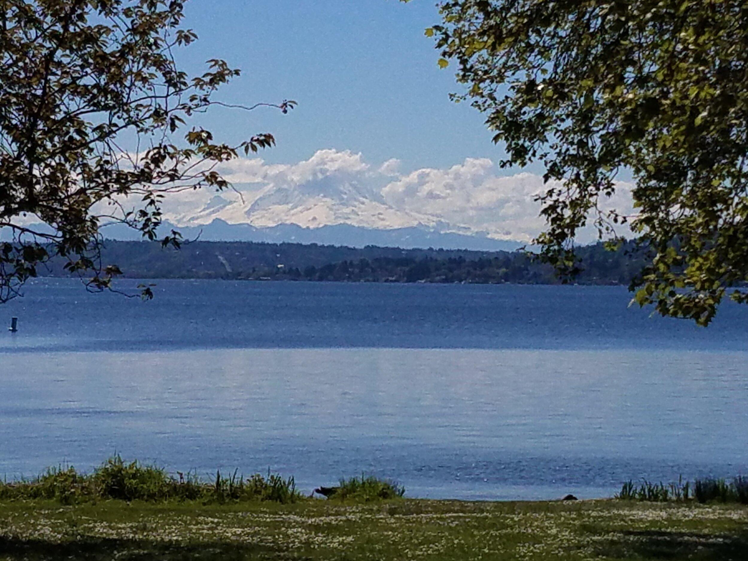 Mt Rainer and Lake Washington from Seward Park