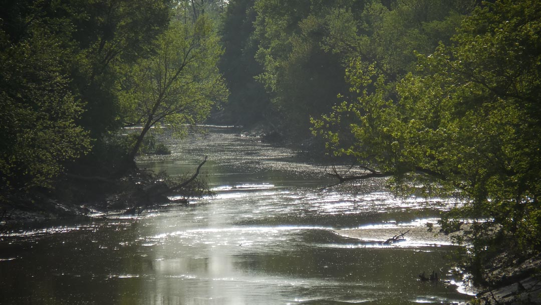 Loosahatchie River- approximately 26 miles of the Loosahatchie is impaired within Memphis limits
