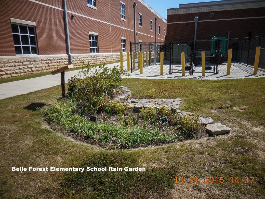 Belle Forest Elementary Rain Garden-1.jpg