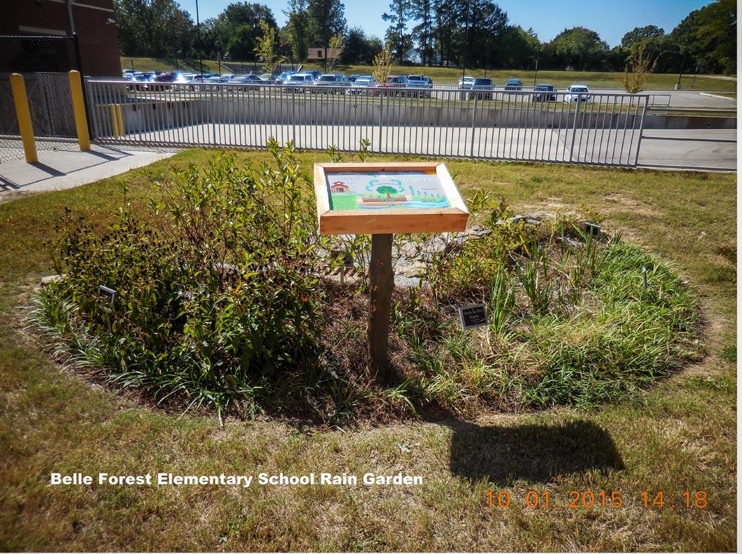 Belle Forest Elementary Raingarden-2.jpg