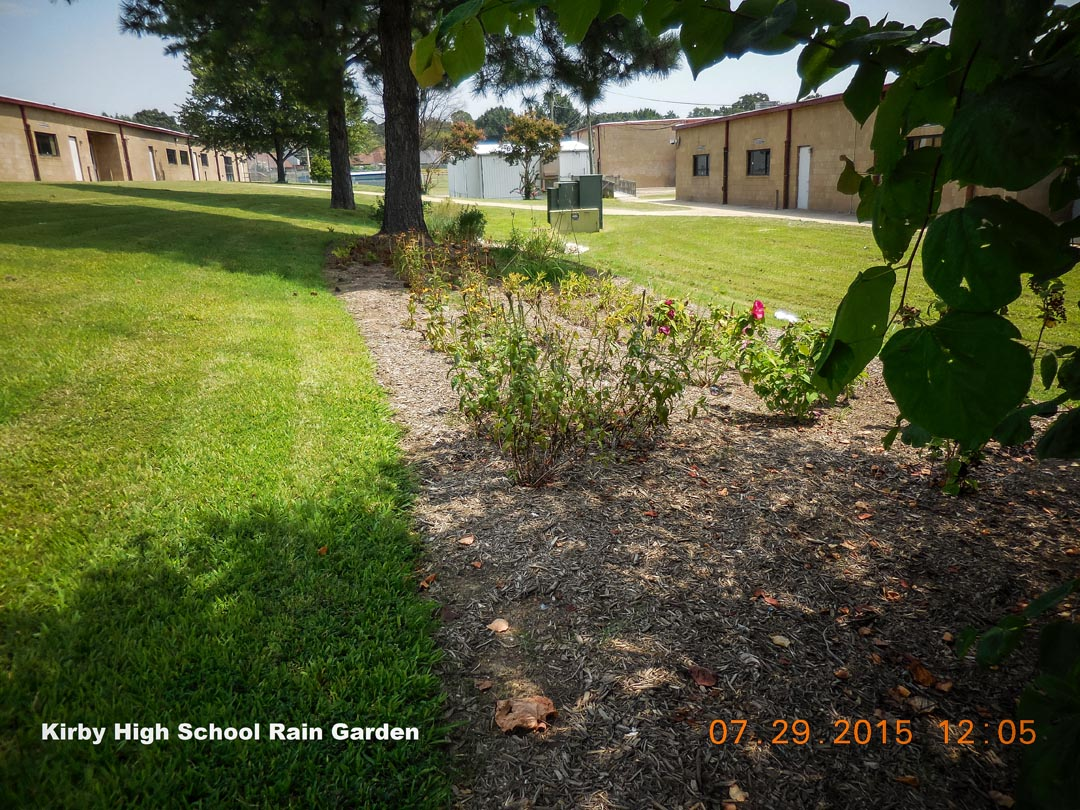 Kirby High Rain Garden-2.jpg