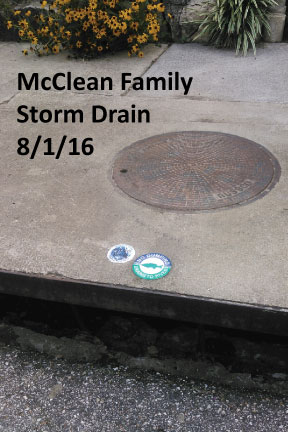Adopted Drains