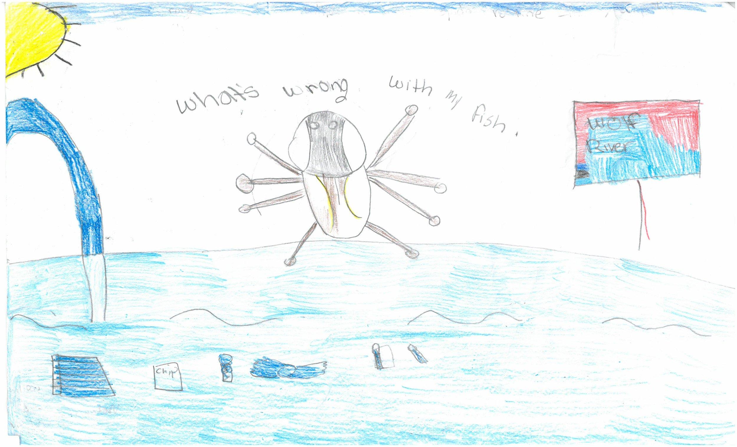 Amyah Fossett, 4th grader at Vollentine Elem.