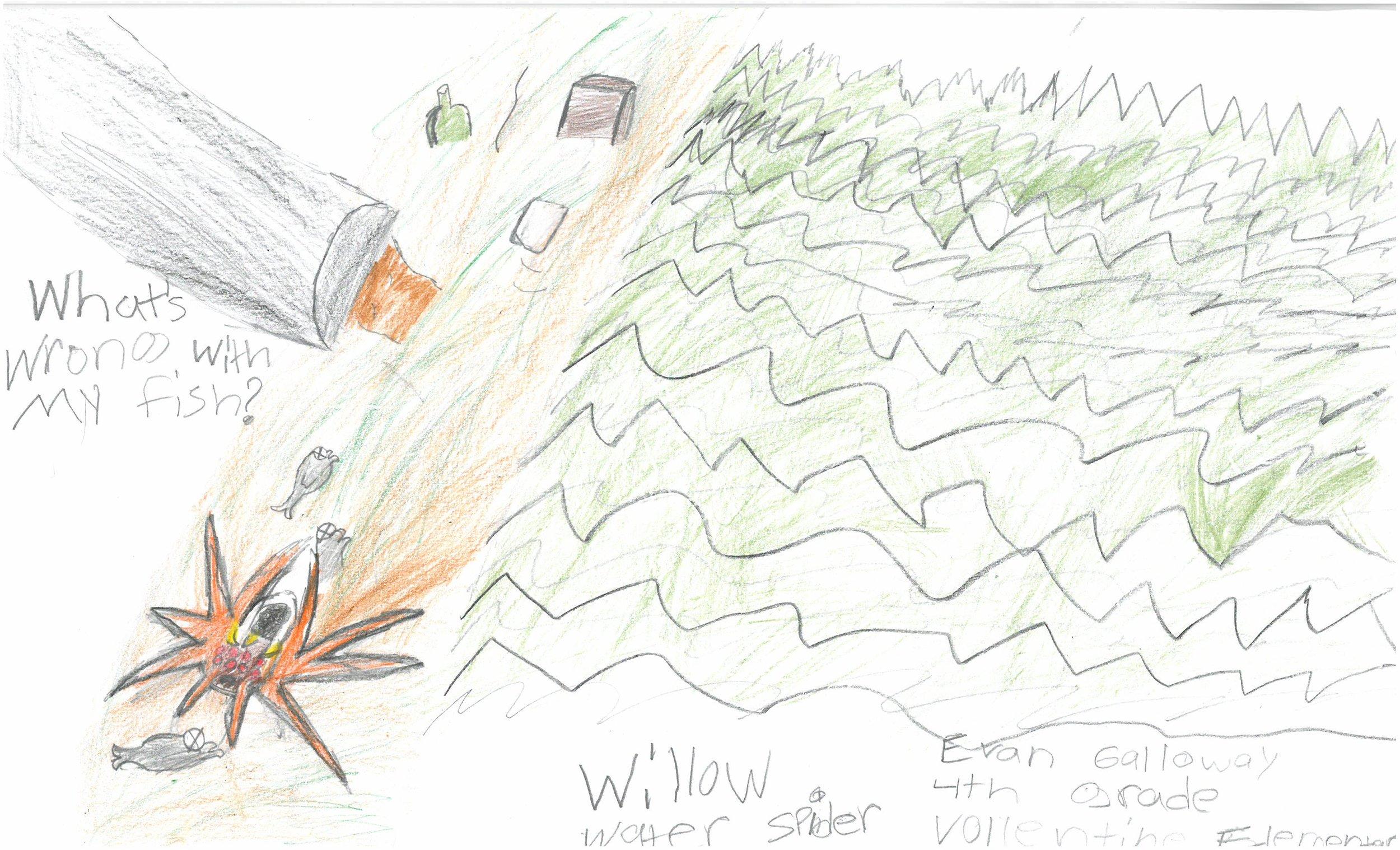 Evan Galloway, 4th grader at Vollentine Elem.