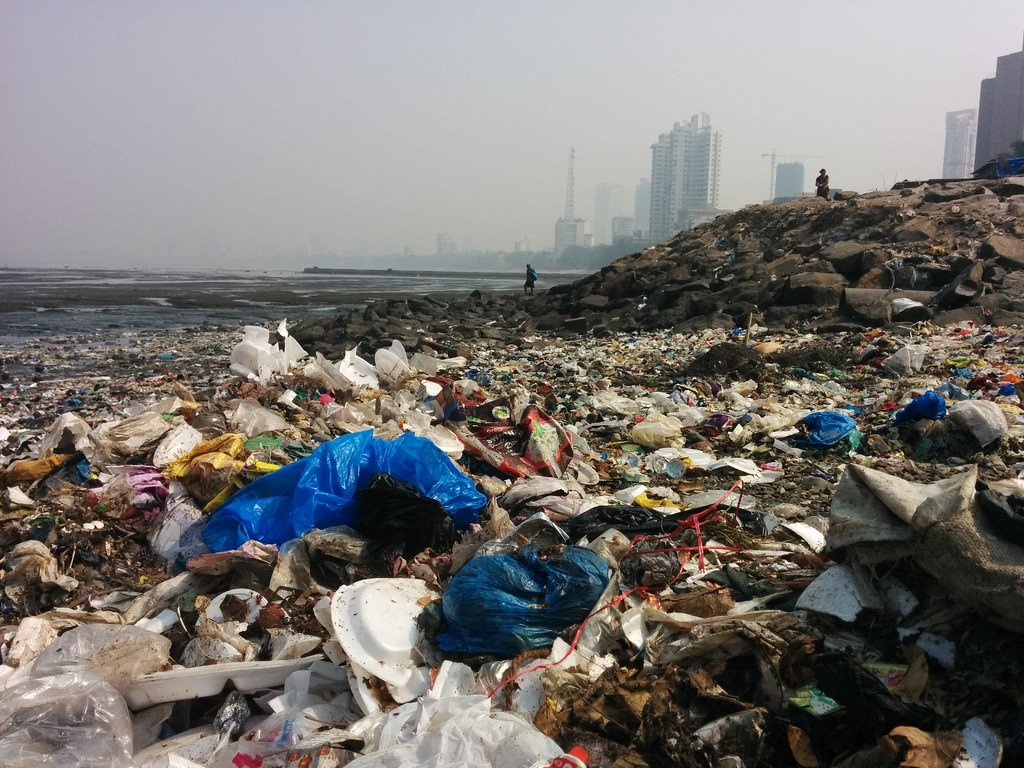 Improper disposal of plastics is a problem worldwide and single-use plastics are an issue because they don't decompose in the same way paper does. Make a commitment to be wiser in your use and disposal of plastics today!