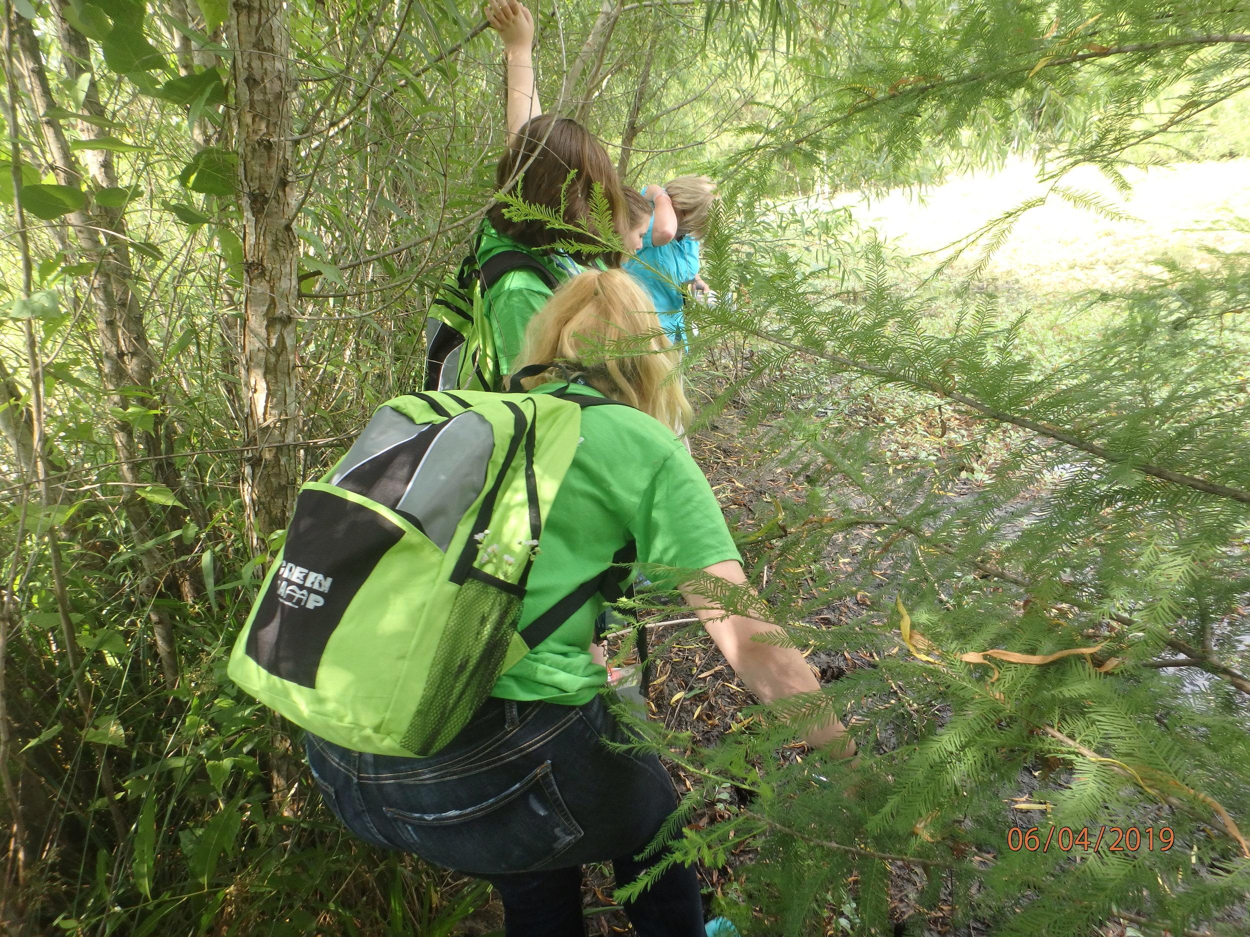 Day 2: T.O. Fuller Urban Man-made Wetland Assessment
