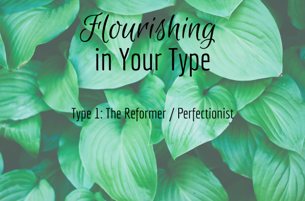 Flourishing in Your Type 1: The Reformer / Perfectionist - Recording of webinar on 8-23-18.
