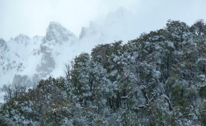 Descanso en el sur de Chile   Ven a descansar en medio de la naturaleza.    Reservas