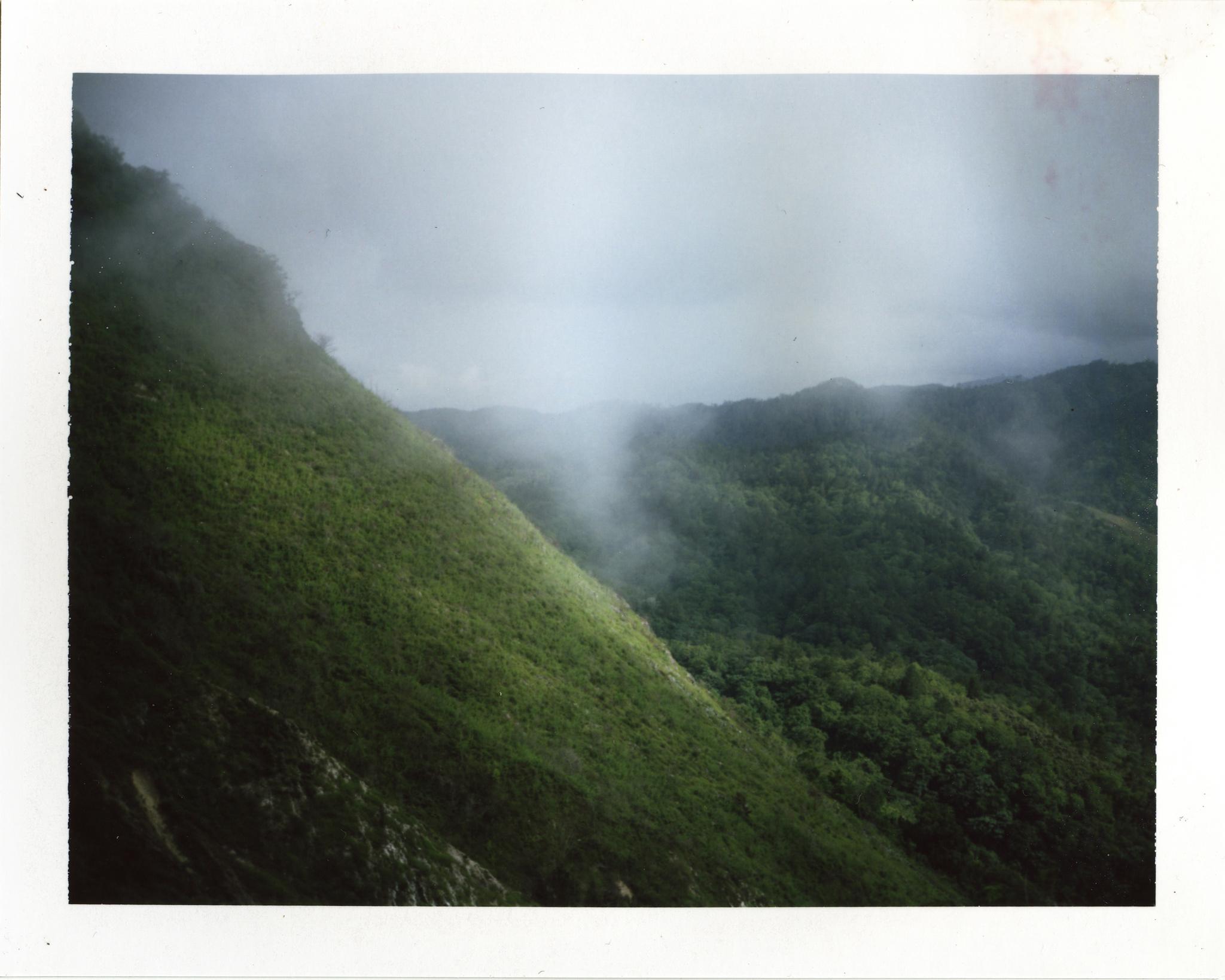 DR_Polaroid_09.jpg